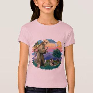Pomeranian (T) T-Shirt