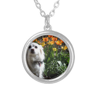 Pomeranian Tulips Silver Plated Necklace