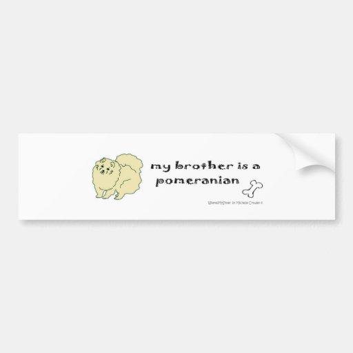 PomeranianCreamBrother Bumper Sticker