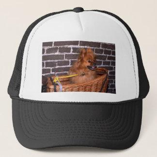 Pomeranium Trucker Hat
