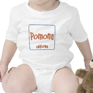 Pomona California BlueBox Baby Bodysuits