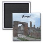 Pompeii, Italy Refrigerator Magnet