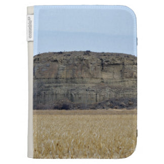 Pompeys Pillar Rock Cases For The Kindle