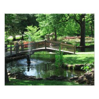 Pond Bridge Photo