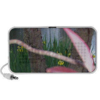 Pond Flora Speaker