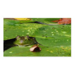Pond Services Pack Of Standard Business Cards