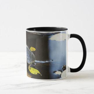 Pond slider turtle in the wild mug