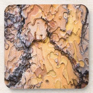 Ponderosa pine bark, Washington Beverage Coaster