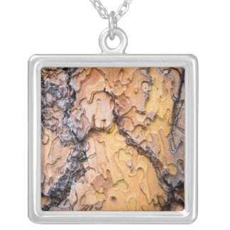 Ponderosa pine bark, Washington Silver Plated Necklace