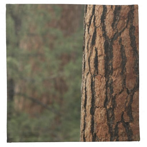 Ponderosa Pine Tree American MoJo Napkin