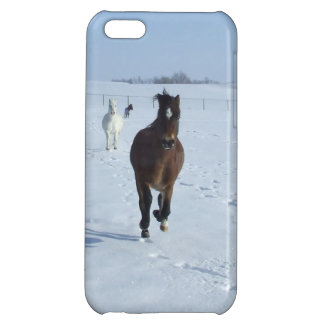 Ponies at Play iPhone Case iPhone 5C Cover
