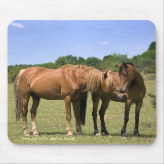 Ponies in Love Mousemat