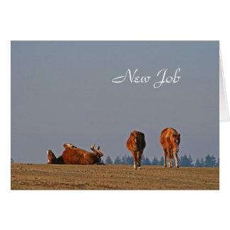 Ponies new job card