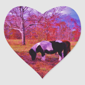 PONY IN A RAINBOW colored field Sticker