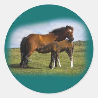 Pony Mare Feeding Foal stickers