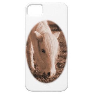 Pony on Dartmoor iPhone 5 Cover