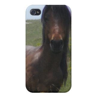 Pony Resting iPhone 4 Case