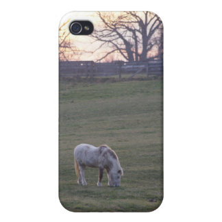 Pony Sunset iPhone 4/4S Cases