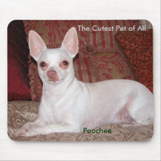 Poochee winter 026, The Cutest Pet of All., Poo... Mouse Pad
