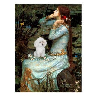 Poodle (11W) - Ophelia Seated Postcard