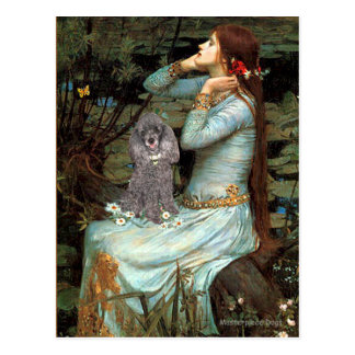 Poodle (8S) - Ophelia Seated Postcard