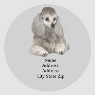 Poodle Address Label