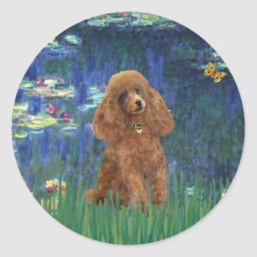 Poodle (Apricot 10) - Lilies 5 Round Sticker