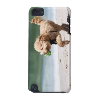 Poodle - Apricot - Poodle Play iPod Touch 5G Cover