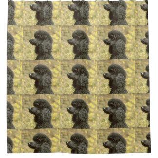 poodle black shower curtain