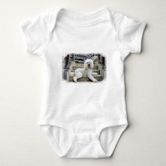 Poodle - Brulee - Trainer Baby Bodysuit