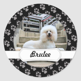 Poodle - Brulee - Trainer Classic Round Sticker