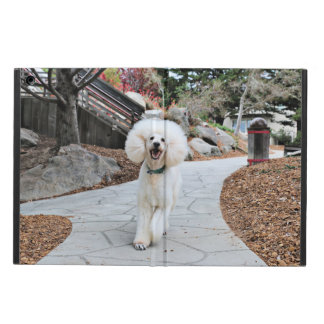 Poodle - Brulee - Trainer iPad Air Cover