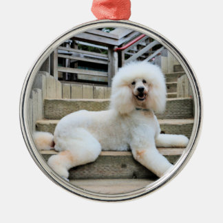 Poodle - Brulee - Trainer Silver-Colored Round Decoration
