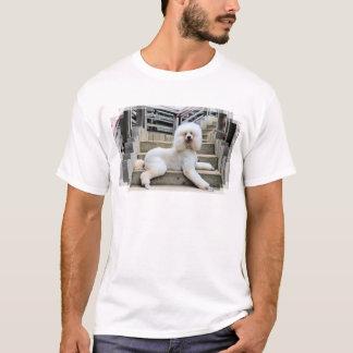 Poodle - Brulee - Trainer T-Shirt