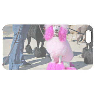 Poodle Day 2016 - Barnes - Pink Standard Poodle Clear iPhone 6 Plus Case