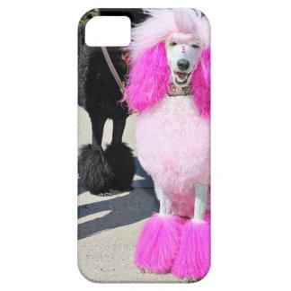 Poodle Day 2016 - Barnes - Pink Standard Poodle iPhone 5 Cases