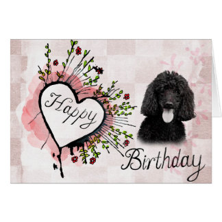 Poodle Dog Happy Birthday Greeting Card