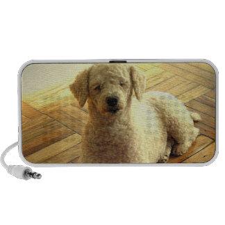 Poodle Dog Portable Speakers