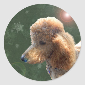 POODLE FOR THE HOLIDAYS CLASSIC ROUND STICKER