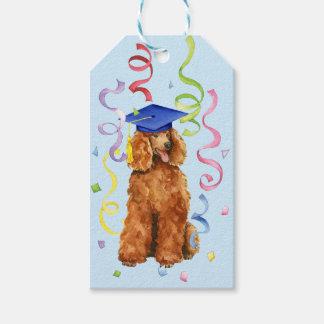 Poodle Graduate