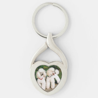 poodle group white key ring