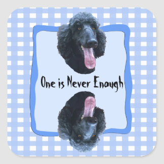 Poodle One is never enough Square Sticker