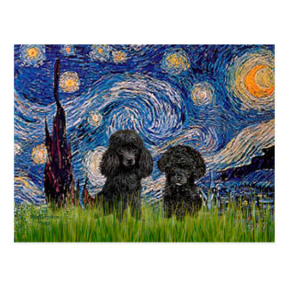 Poodle Pair (black) - Starry Night Post Card