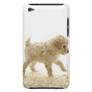 Poodle Puppy Case-Mate iPod Touch Case