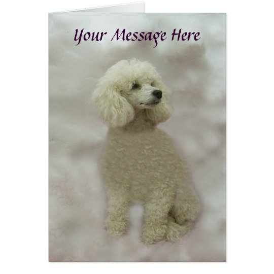 Poodles Are Heavenly Greeting Card
