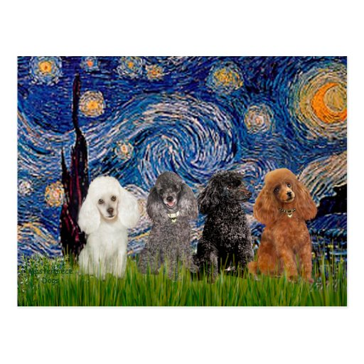 Poodles (four) - Starry Night Postcards
