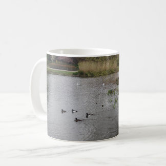 Pool & Swimming Birds White Coffee Mug