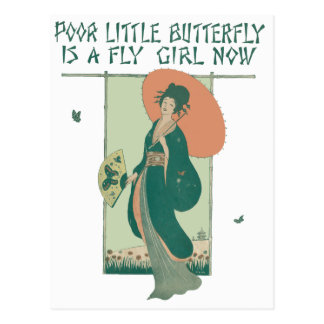 Poor Little Butterfly Is A Fly Girl Now Postcard