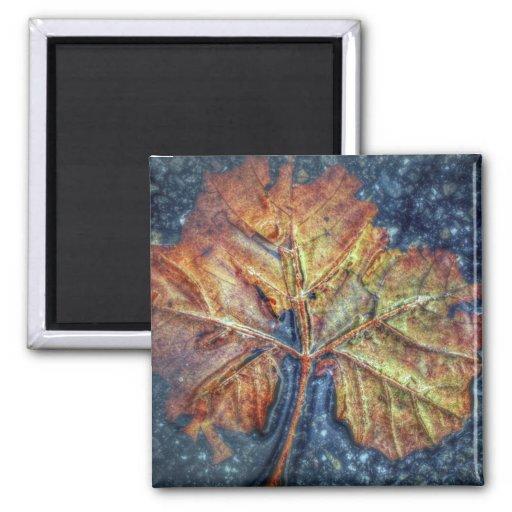 Pop Art Autumn Leaf Magnet