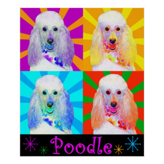 Pop Art Quad Miniature Poodle Poster